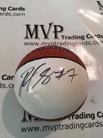 Ramon Sessions Authentic Autograph Mini Basketball